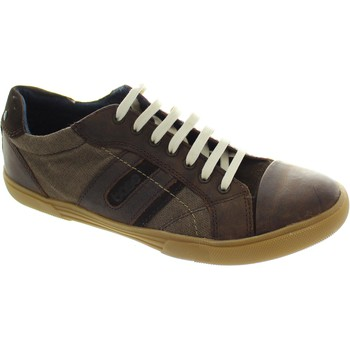 Shoes Men Low top trainers Base London Americas Waxy/Linen Brown