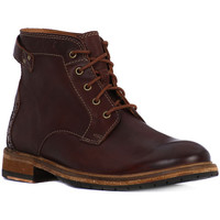 Shoes Men Ankle boots Clarks CLARKDALE BUD    190,1