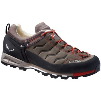 Shoes Men Low top trainers Salewa MS Mtn Trainer Leather Black-Red-Brown