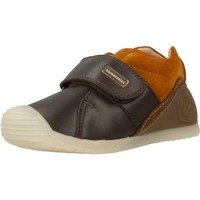 Shoes Children Low top trainers Biomecanics 171145 Brown