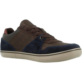 Shoes Men Low top trainers Geox U BOX Brown
