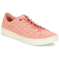 Shoes Women Low top trainers Toms Lenox Bloom