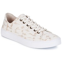 Shoes Women Low top trainers Toms LENOX White / Gold