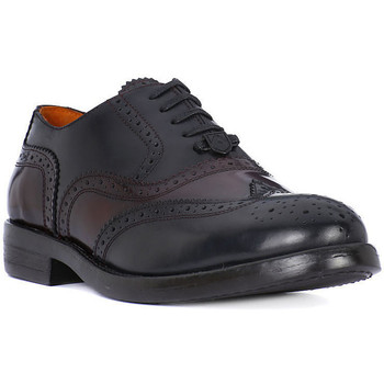 Shoes Men Brogues Ambitious AMBITIUS  ALLACCIATA BORDO    106,9