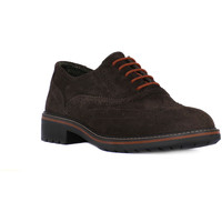 Shoes Men Derby Shoes Igi&co BRUSH CAFFE     94,5