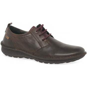 Shoes Men Low top trainers Pikolinos Sven Mens Casual Lace Up Shoes brown