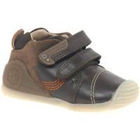 Shoes Boy Low top trainers Garvalin Chamomile Boys First Shoes brown