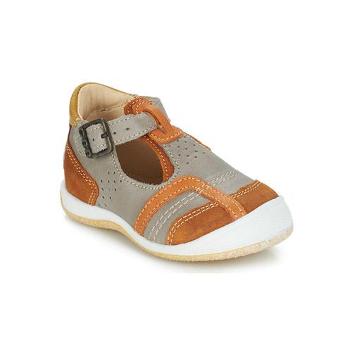 Shoes Boy Sandals GBB SIGMUND Taupe / Cognac