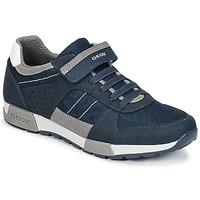 Shoes Boy Low top trainers Geox J ALFIER B. A Marine / Grey