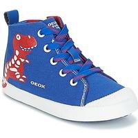 Shoes Boy Hi top trainers Geox B KILWI B. F Blue / Red