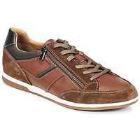 Shoes Men Low top trainers Geox U RENAN C Brown