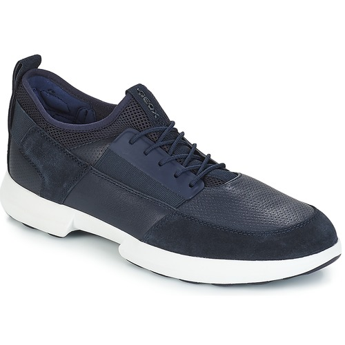 Shoes Men Low top trainers Geox TRACCIA Navy