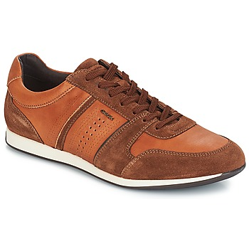 Shoes Men Low top trainers Geox CLEMENT Brown