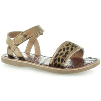 Shoes Children Sandals Gioseppo Daroca Bronze