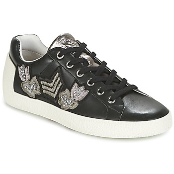 Shoes Women Low top trainers Ash NAK-AR Black
