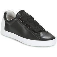 Shoes Women Low top trainers Ash NINA Black