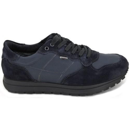 Shoes Men Water shoes Igi&co Sneakers GTX 8741 blue