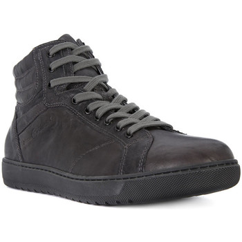 Shoes Men Hi top trainers Nero Giardini NERO GIARDINI ROYAL PIOMBO Grigio