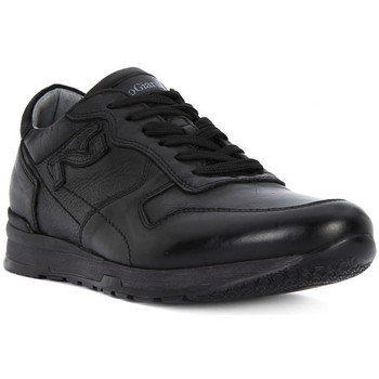 Shoes Men Low top trainers Nero Giardini NERO GIARDINI  NEOPOLIS NERO Nero