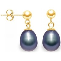 Watches Women Earrings Blue Pearls Black Freshwater Pearls Earrings and yellow gold 750/1000 Multicolored