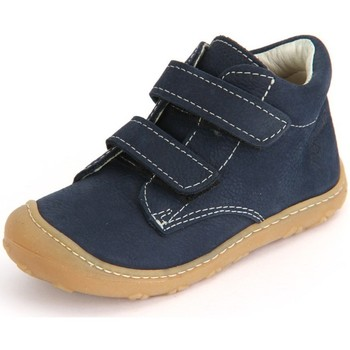 Shoes Children Hi top trainers Ricosta Chrisy See Barbados