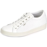 Shoes Women Low top trainers Igi&co Igico 7791100 Dat 77911 Bianco