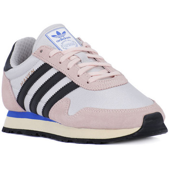 Shoes Women Low top trainers adidas Originals HAVEN W Multicolore
