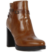 Shoes Women Mid boots Nero Giardini NERO GIARDINI MANOLETE CUOIO Marrone