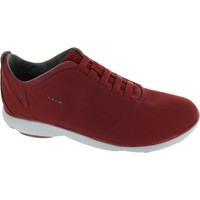 Shoes Men Low top trainers Geox U Nebula F Wine