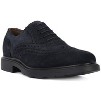 Shoes Men Derby Shoes Nero Giardini NERO GIARDINI COLORADO Nero