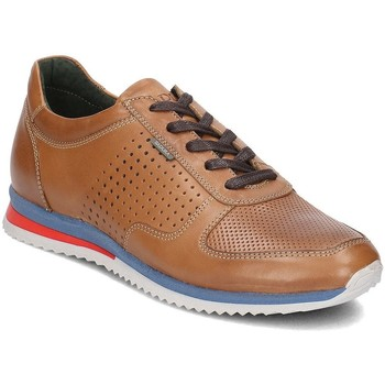 Shoes Men Low top trainers Badura 33371042 Brown