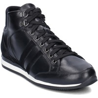 Shoes Men Hi top trainers Gino Rossi Torino Black
