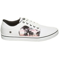 Shoes Low top trainers Lico California White