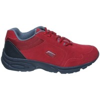 Shoes Low top trainers Brütting Brütting Sport Circle Red