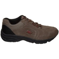 Shoes Low top trainers Brütting Brütting Hunter Brown