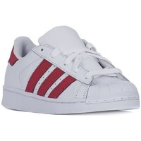 Shoes Children Low top trainers adidas Originals Superstar Foundation White