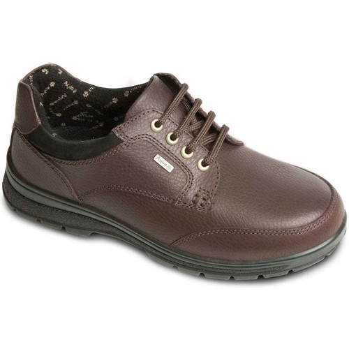 Shoes Women Derby Shoes Padders Peak Womens Casual Lace Up Shoes brown