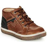 Shoes Boy Hi top trainers Catimini PASCOU Brown
