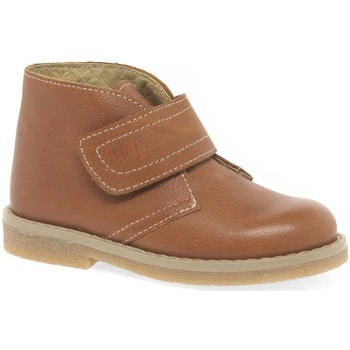 Shoes Boy Mid boots Melania Clark Youth Boy's Rip Tape Desert Ankle Boots brown