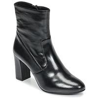 Shoes Women Ankle boots Steve Madden AVENUE Black