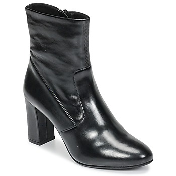 Shoes Women Ankle boots Steve Madden AVENUE Black