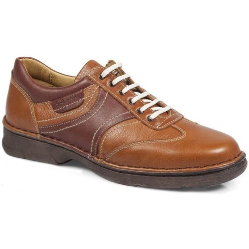 Shoes Women Derby Shoes & Brogues Calzamedi Shoes  Shark M 2151 MARRON