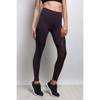Clothing Women leggings Koral Frame High Black