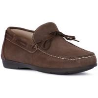 Shoes Men Loafers Igi&co SCAMOSCIATO TORTORA Beige