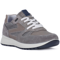 Shoes Men Low top trainers Igi&co CAMOSCIO GRIGIO Grigio
