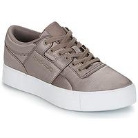 Shoes Women Low top trainers Reebok Classic WORKOUT LO FVS TXT Grey