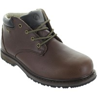 Shoes Men High boots Cotswold Bredon Brown