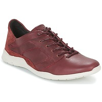 Shoes Women Low top trainers TBS JARDINS Brown