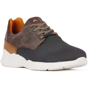 Shoes Men Low top trainers Ambitious AMBITIUS ALLACCIATA TAUPE Marrone