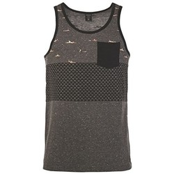 Clothing Men Tops / Sleeveless T-shirts Protest Camiseta Hombre Nevada Asphalt GRIS